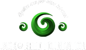 Jack_Reed_Foundation_small